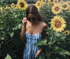 art, sunflower, and aestetic image