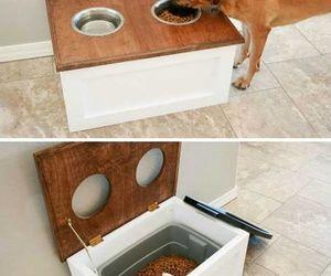 diy, food, and dog image