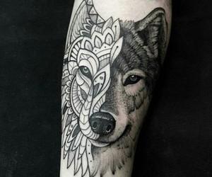 animal, art, and tattoo image