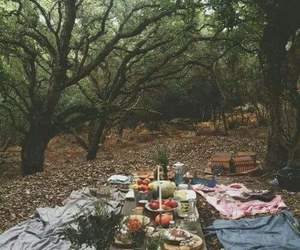 food, picnic, and nature image