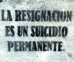 frases, no, and suicide image