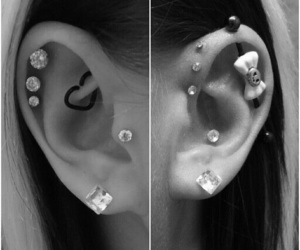 conch, goals, and industrial image