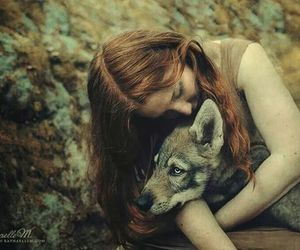 wolf, child, and forest image
