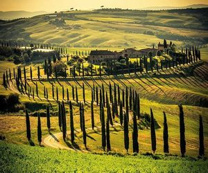 italy, outdoors, and siena image