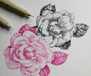 art, draw, and peony image