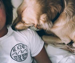 dog, girl, and tumblr image