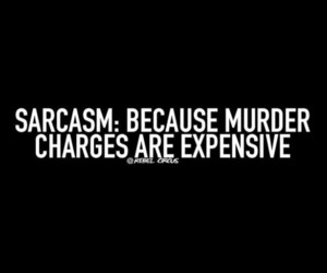 funny, quotes, and sarcasm image