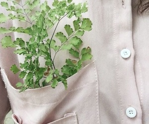 button up, leaves, and green image