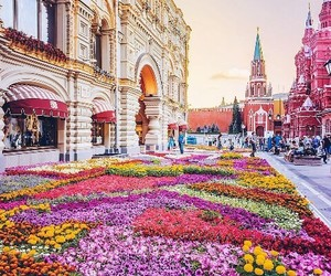 flowers, place, and travel image
