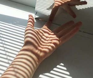 hands, shadow, and white image