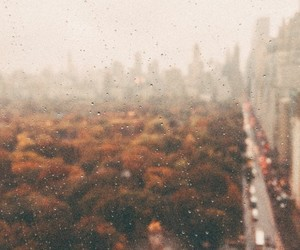 city, fall, and mist image