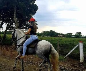 caballos, horses, and mexico image