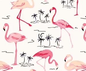 flamingo and wallpaper image