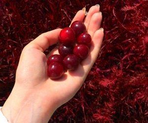 cherry, red, and aestetic image