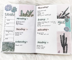 aesthetic, inspiration, and study notes image