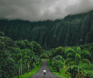 green, nature, and clouds image