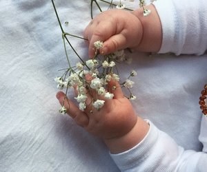 babys, flowers, and hands image