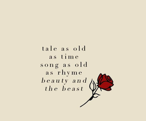 disney, beauty and the beast, and Lyrics image