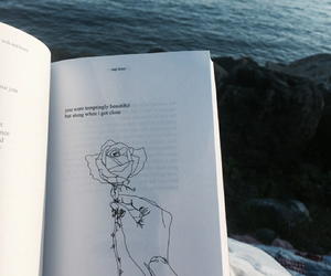 book, quote, and tumblr image