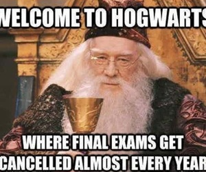 hogwarts, exam, and harry potter image