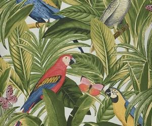 birds, butterflies, and jungle image