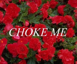 flowers, quotes, and choke image