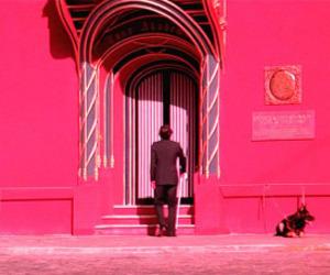 movie set, pink, and suspiria image