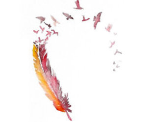 bird, feather, and art image