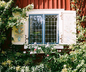 window, beautiful, and flowers image