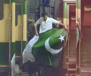 green and 14 august image