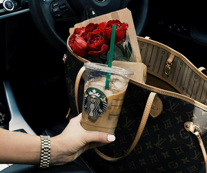 starbucks, bmw, and rose image
