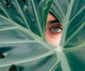 green, eyes, and photography image