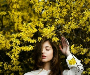 article, flowers, and yellow image