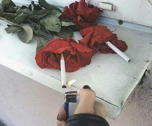 rose, cigarette, and red image
