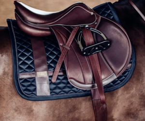 equestrian, horse, and equestrian style image