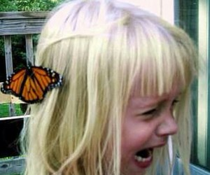 butterfly, girl, and horror image