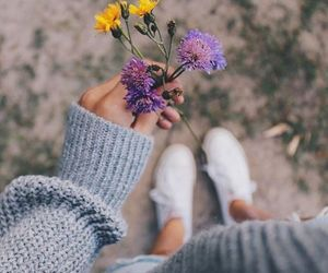 flowers, nature, and tumblr image