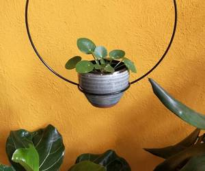 green, minimalism, and nature image