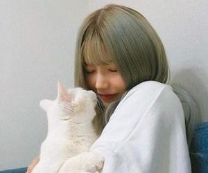 cat, ulzzang, and korea image