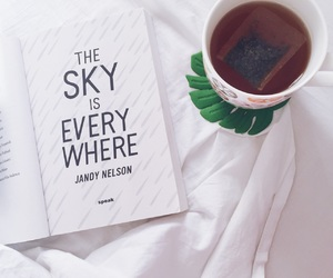 books, the sky is everywhere, and jandy nelson image