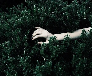 pale, hand, and green image