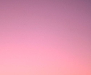sunset, summer, and pink image