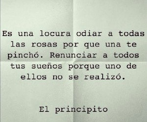 frases, book, and dreams image