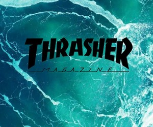 blue and thrasher image