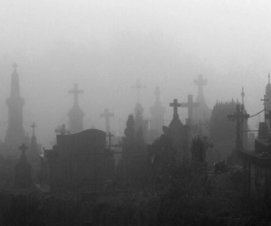 cemetery, dark, and fog image