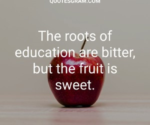 education, quotes, and inspiration image