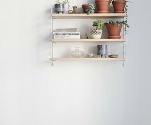 cool, plantas, and room image