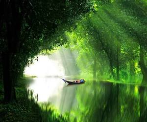 amazing, river, and summer image