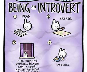 introvert image