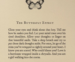 butterflies, love, and past image